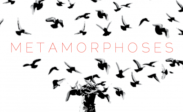 Metamorphoses FEATURE